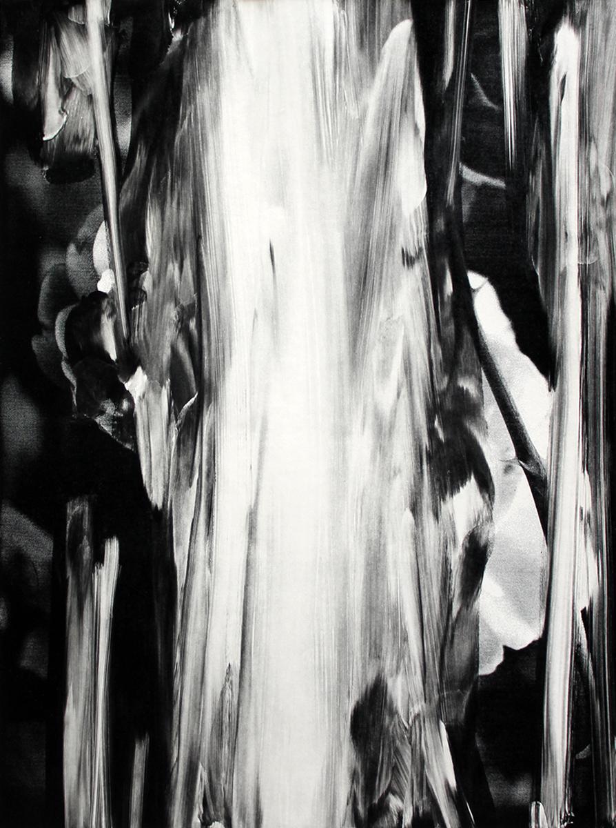 Lars Grenaae   Rose#2, 2018. Monotype, 100x70 cm